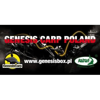 GENESIS CARP BANER 100x50cm